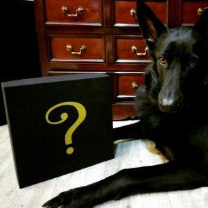 Caja de Magia disponible exclusivamente en Magia Estudio