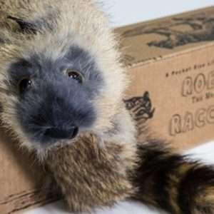 junior robbie raccoon disponible en Magia Estudio