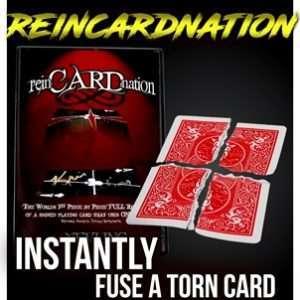 reincardnation