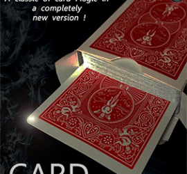 card ribbon disponible en Magia Estudio