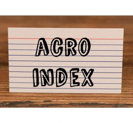 acro-index-blake-vogt